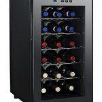 nevera para vino DCG Eltronic MF48A